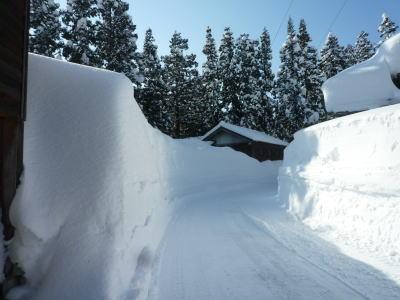越後長岡➡2018年2月の大雪 大雪になると道に雪の壁が出来ます。
